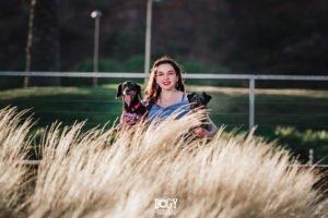 perritos adoptados